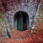 Mysterious Door... by Daidalos
