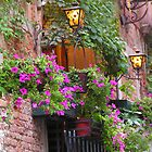 Purple Petunia's in Venice by Tamara  Kaylor
