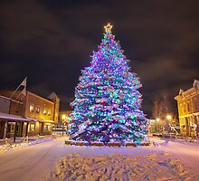 Idyllic Christmas, Gunnison, Colorado by Ryan Wright