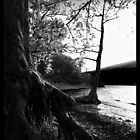 Rowardennan, Scotland by Audrey Krüger