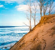 Winter Dune Edge by mrscaer