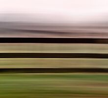 Farm Fence by Su Walker