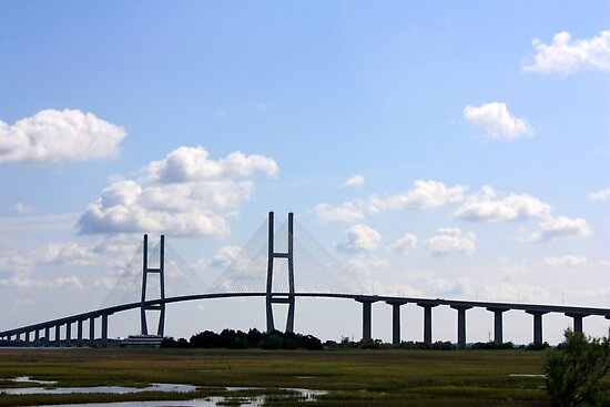 Sidney Lanier Bridge, Brunswick, Georgia by AuntDot