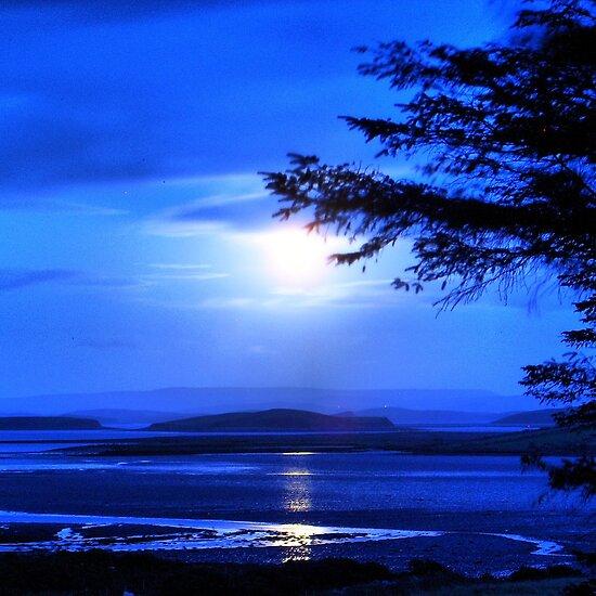 EL HILO DE LOS AMIGUETES XI - Página 4 Work.2256340.7.flat,550x550,075,f.sea-of-tranquility-moonlight-in-mulranny