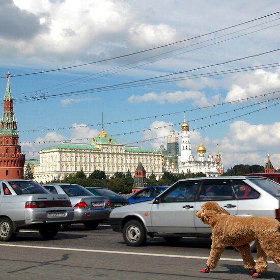 Moscow's Traffic