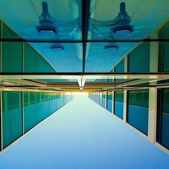 unusual perspective