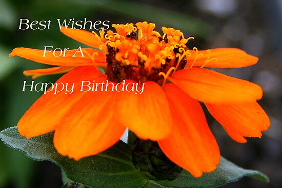 birthday wishes quotes for a friend. irthday wishes quotes for