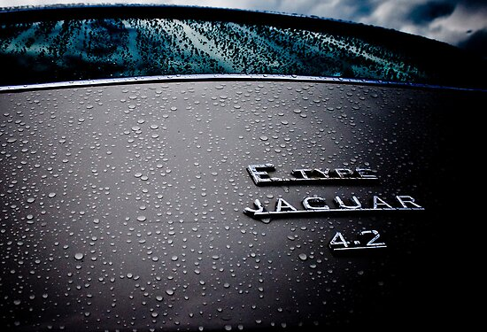 Gray Photography Automotive Rain Jaguar E-type 4.2 by LongbowX