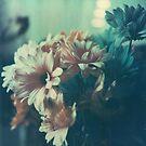 Polaroid: Fleur by Apogeion