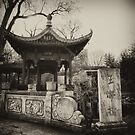 Chinese Garden by Daniel Hachmann