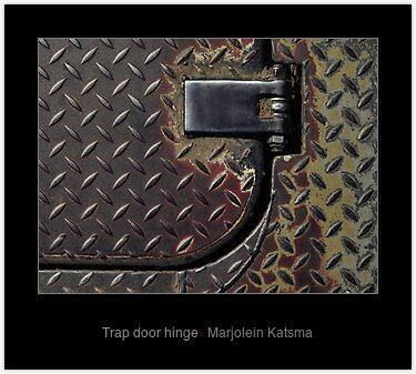 Trap door hinge