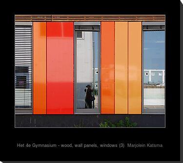 Het 4e Gymnasium - wood, wall panels, windows (3)