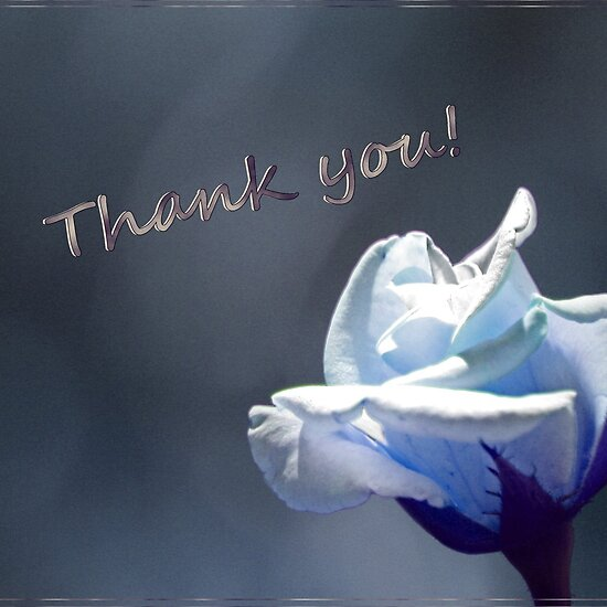 Color Thank You Cards
