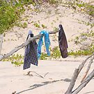 Byron Bay Clothesline by ByronBay-Spirit