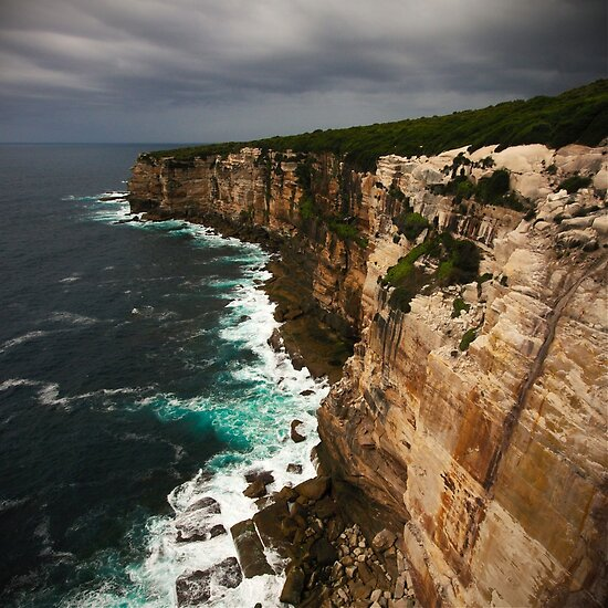 Marley Track, Royal National Park, Sydney