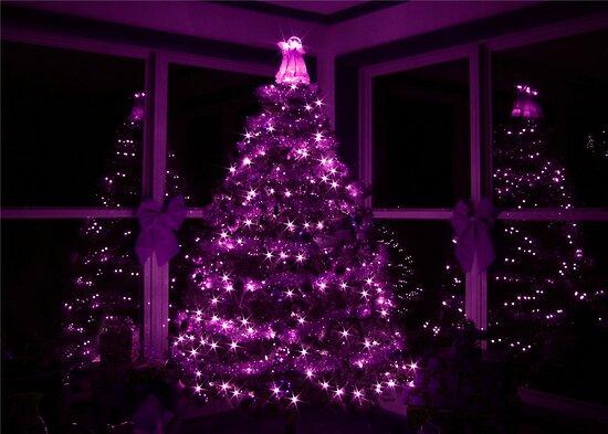 """""""PURPLE CHRISTMAS"""" By Lori Deiter"""
