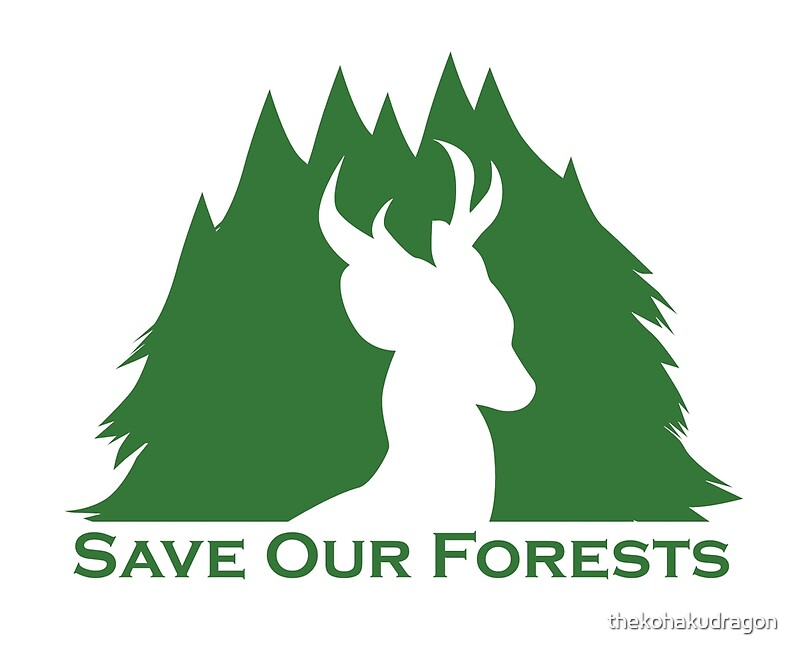 10 things you can do to save the forests