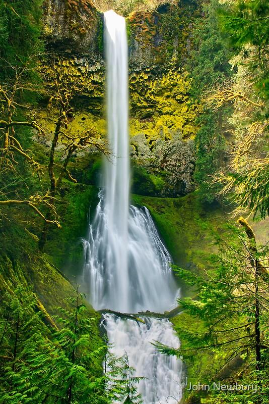 Quot Pup Creek Falls Near Estacada Oregon Quot By John Newbury